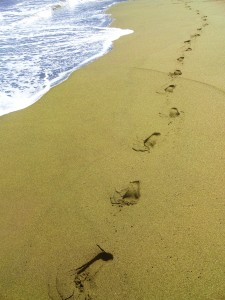 Footsteps in Green Sand