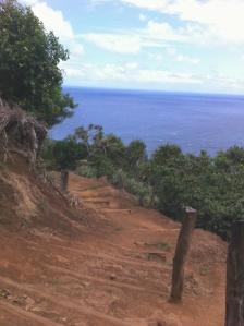 Pololu Pathway
