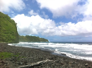 Pololu Shore